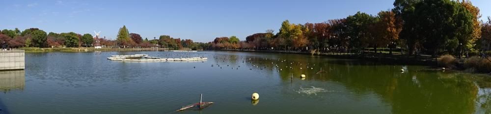 都立浮間公園多面的活用プロジェクト_f0059673_21452254.jpg