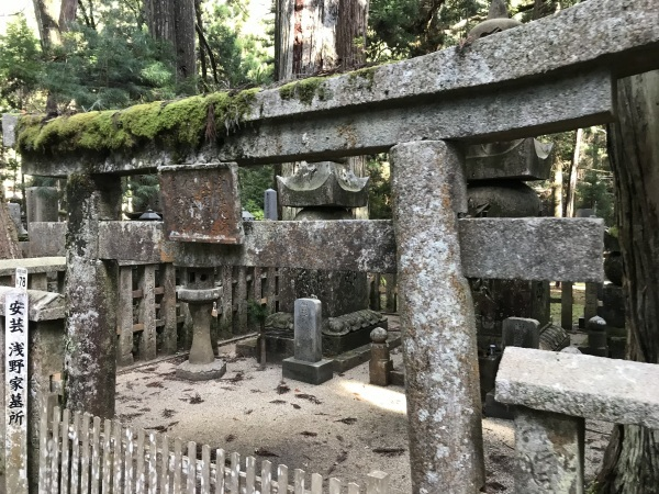 喜多川 高野山 ジャニー