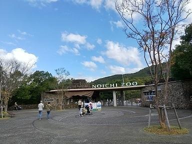 のいち動物公園でハシビロコウに会ってきた♪_d0043390_22422682.jpg