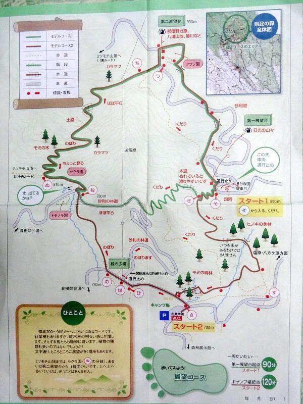 渋滞の日光を避けて栃木県民の森へ_d0137627_23095826.jpg