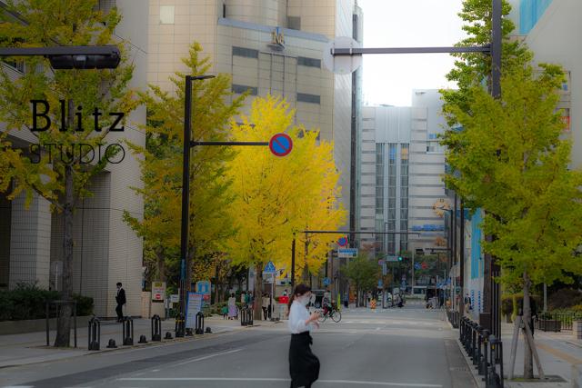 福岡市の紅葉_f0222331_10324316.jpg