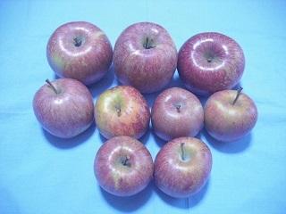 リンゴの季節_c0216937_07113448.jpg