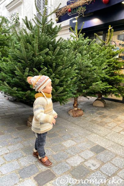 クリスマスのもみの木を買いに_c0024345_18151626.jpg