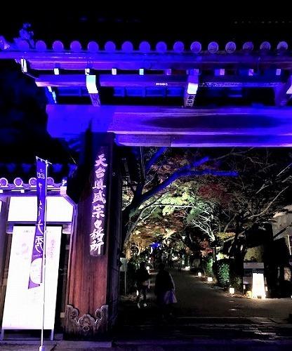 秋真っ盛り_c0165589_16355510.jpg