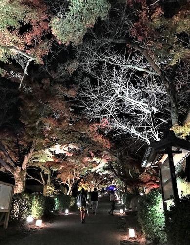 秋真っ盛り_c0165589_16361147.jpg