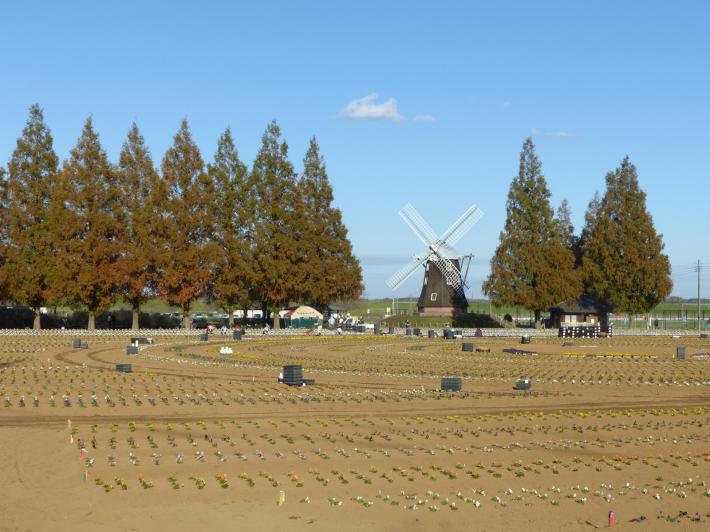 あけぼの山農業公園 風車_f0296312_00590504.jpg