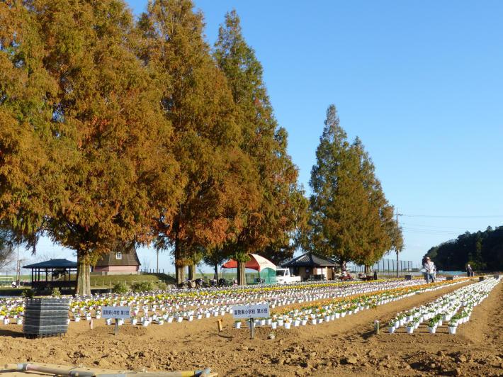 あけぼの山農業公園 風車_f0296312_00595320.jpg