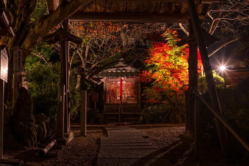 2020紅葉きらめく京都 正壽院ライトアップ_f0155048_23552874.jpg