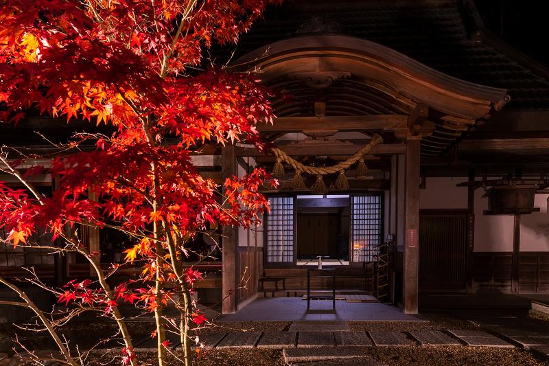 2020紅葉きらめく京都 正壽院ライトアップ_f0155048_23560307.jpg