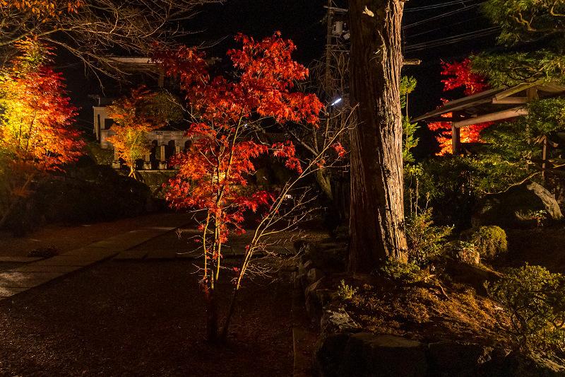 2020紅葉きらめく京都 正壽院ライトアップ_f0155048_23563352.jpg
