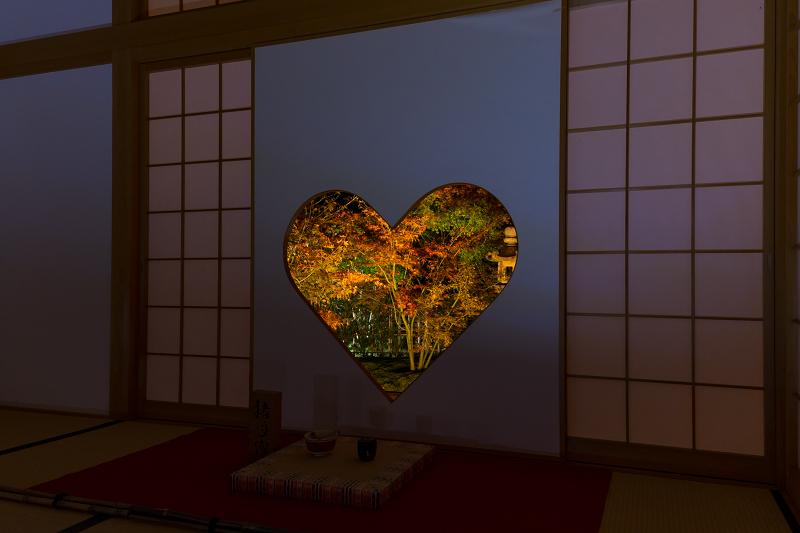 2020紅葉きらめく京都 正壽院ライトアップ_f0155048_23582869.jpg