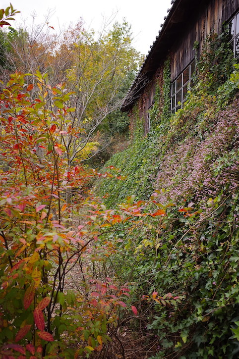 旧白洲邸「武相荘」_f0134963_00225423.jpeg