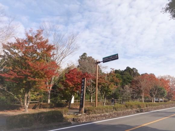 霧島錦江湾国立公園_e0352610_17484919.jpg