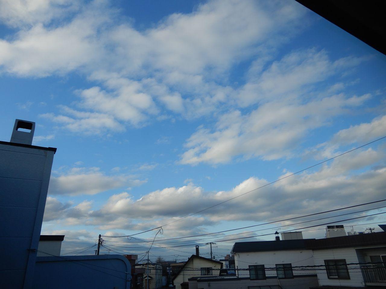 最高気温7.9℃は暖かい_c0025115_22293748.jpg