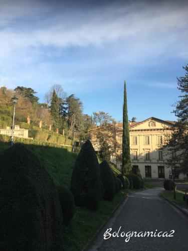 美しいボローニャの丘_b0338818_17262991.jpeg