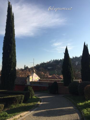 美しいボローニャの丘_b0338818_17281871.jpeg