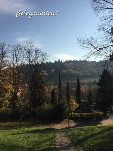 美しいボローニャの丘_b0338818_17283811.jpeg