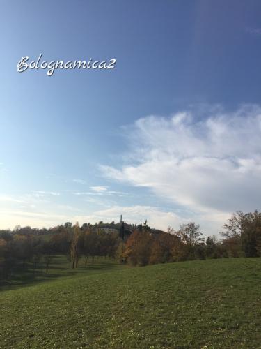美しいボローニャの丘_b0338818_17292390.jpeg