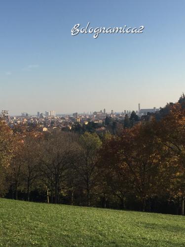 美しいボローニャの丘_b0338818_17294419.jpeg