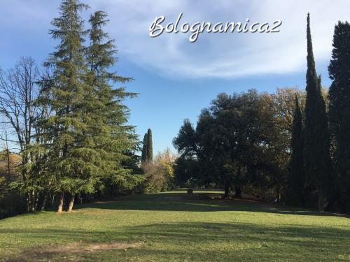 美しいボローニャの丘_b0338818_17301102.jpeg