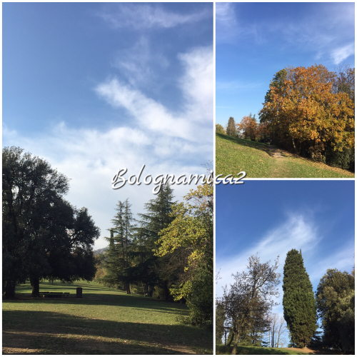 美しいボローニャの丘_b0338818_17303221.jpeg