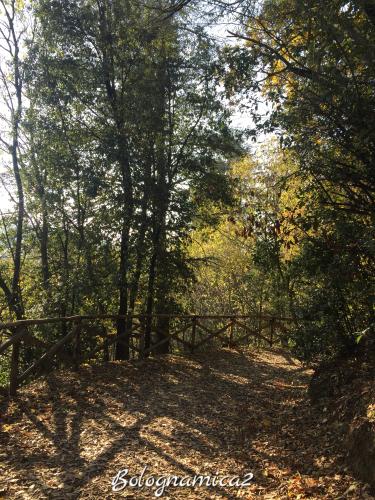 美しいボローニャの丘_b0338818_17305863.jpeg