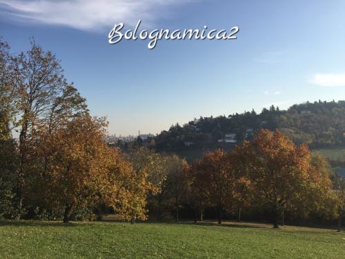 美しいボローニャの丘_b0338818_17382979.jpeg