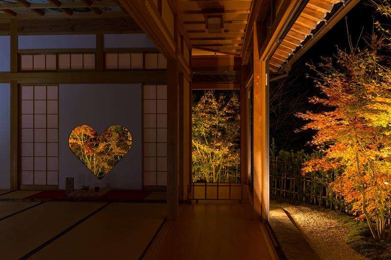2020紅葉きらめく京都 正壽院ライトアップ_f0155048_00002797.jpg