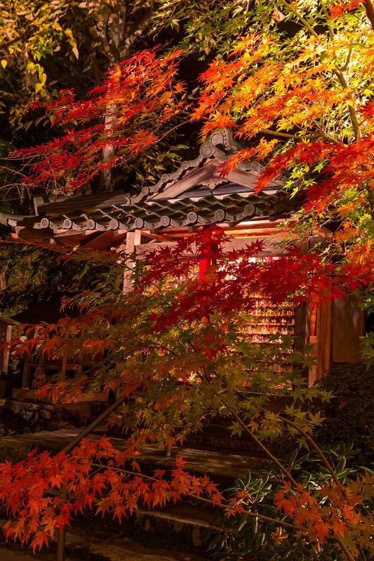2020紅葉きらめく京都 正壽院ライトアップ_f0155048_00015614.jpg