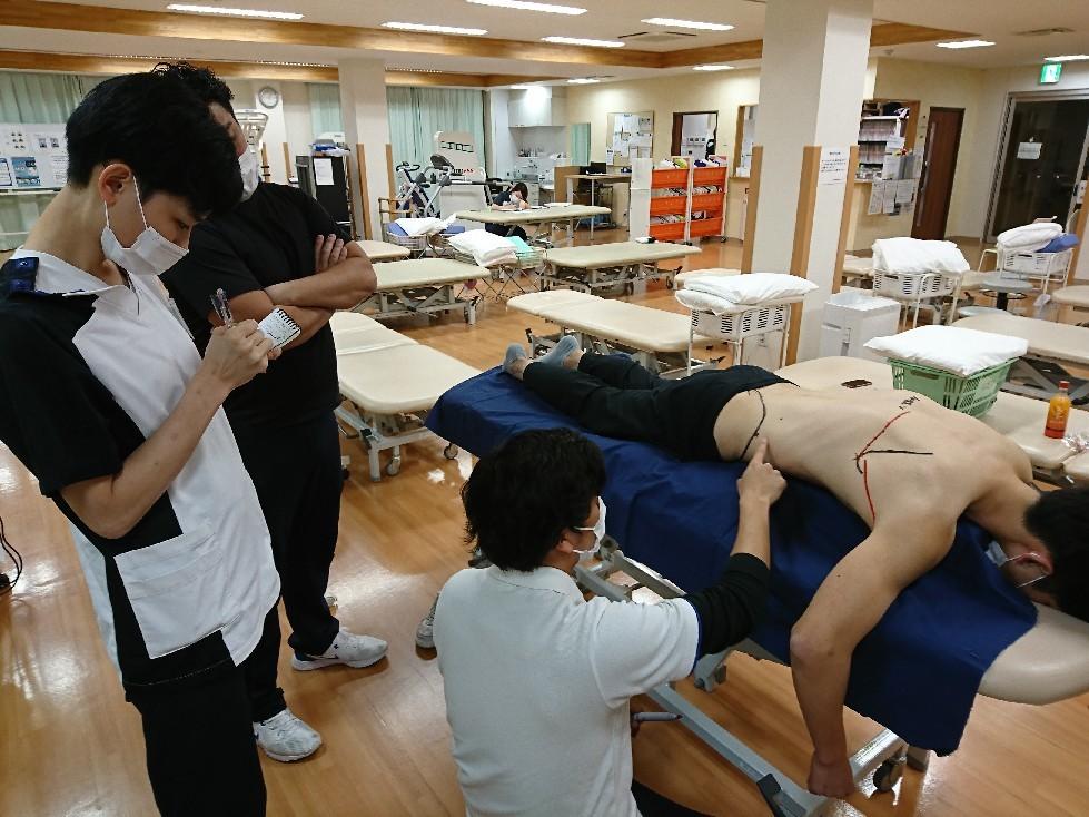 第184回TOC体表解剖勉強会|広背筋の触察_b0329026_19214716.jpg