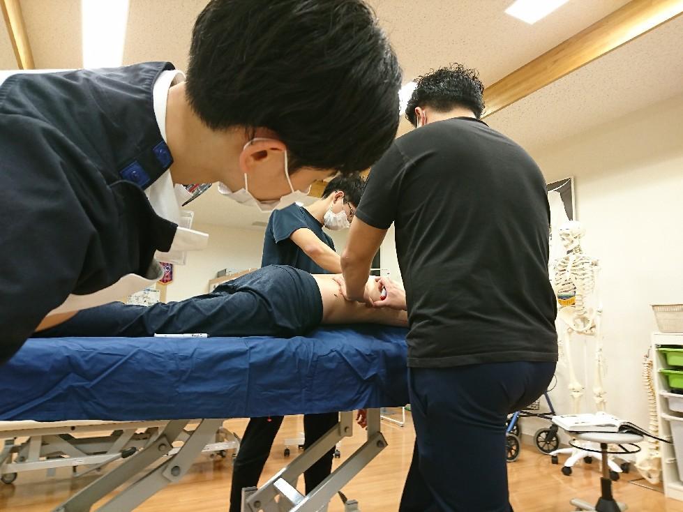 第184回TOC体表解剖勉強会|広背筋の触察_b0329026_19214725.jpg