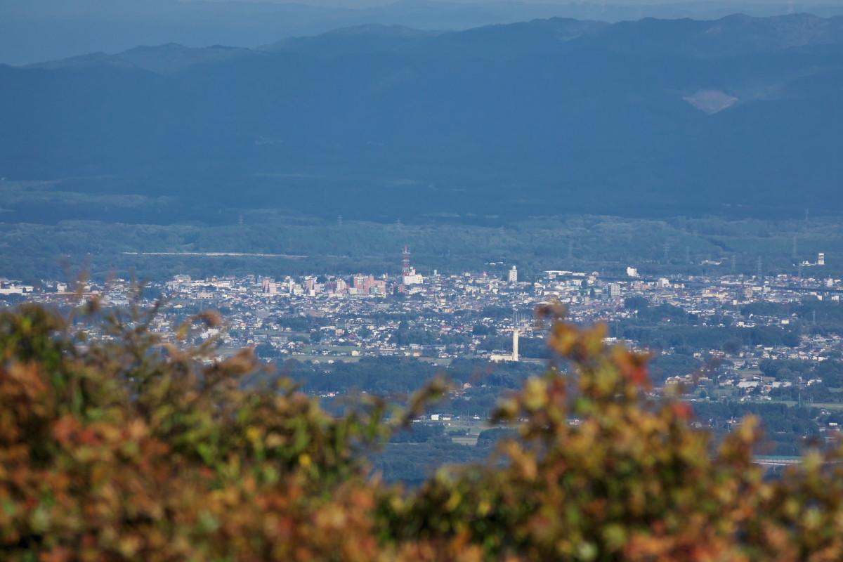 渋滞の日光を避けて栃木県民の森へ_d0137627_23020056.jpg