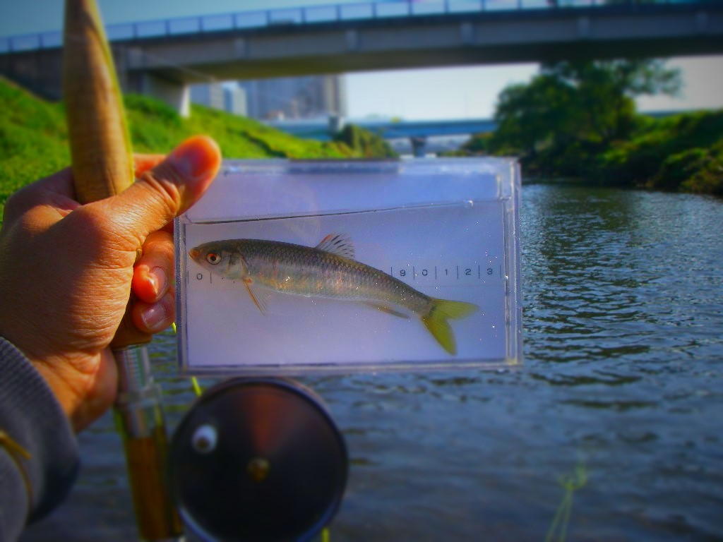すっかり忘れてた釣行の更新_a0130057_00123714.jpg