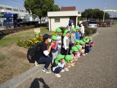 中川口緑地にて緑地見学会を行いました!_d0338682_09370830.jpg