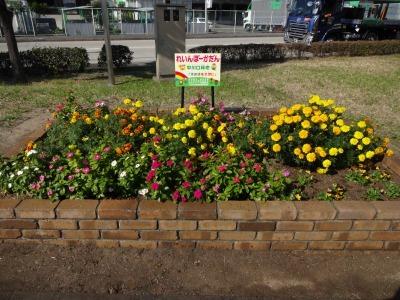 中川口緑地にて緑地見学会を行いました!_d0338682_09373249.jpg
