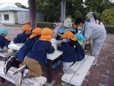 富浜緑地にて緑地見学会を行いました!_d0338682_14152631.jpg