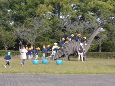 富浜緑地にて緑地見学会を行いました!_d0338682_14181446.jpg