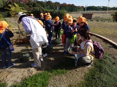 富浜緑地にて緑地見学会を行いました!_d0338682_14295039.jpg