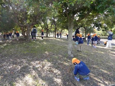 富浜緑地にて緑地見学会を行いました!_d0338682_14384897.jpg