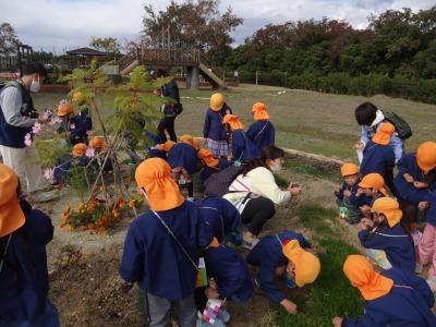 富浜緑地にて緑地見学会を行いました!_d0338682_14420655.jpg