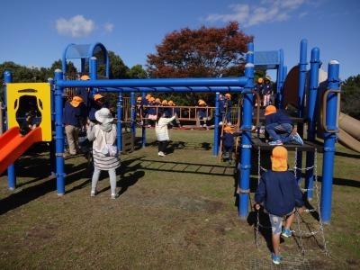 富浜緑地にて緑地見学会を行いました!_d0338682_14423519.jpg