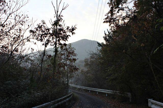 熊山登山 段谷尾根コースを登る!の巻_f0325295_14042787.jpg