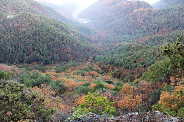 熊山登山 段谷尾根コースを登る!の巻_f0325295_14514498.jpg