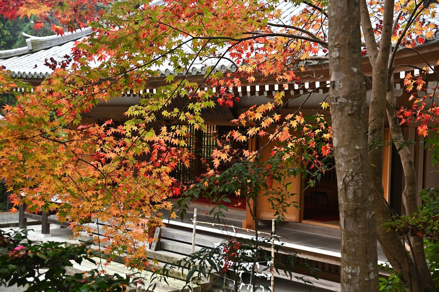 ■ 神峯山寺へ_d0334796_12331636.jpg