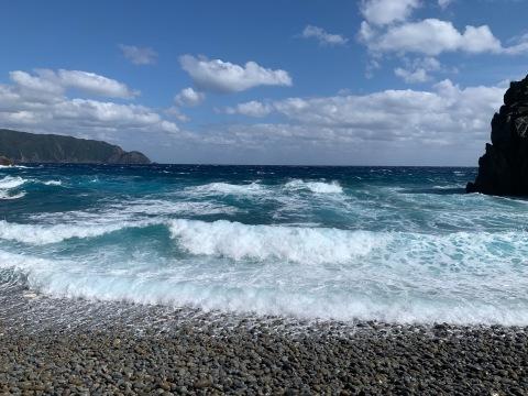 二つの節目:学会発表終了&奄美大島の時間_d0167002_19004494.jpg