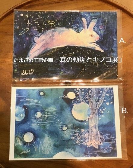 たまごの工房企画「森の動物とキノコ展」その11_e0134502_20150397.jpeg