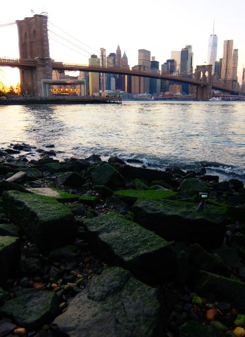 ブルックリン・ブリッジ・パークから眺める日没のマンハッタン_b0007805_02251860.jpg