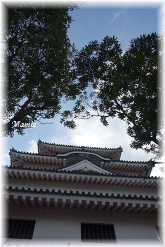 天守閣からの景色  GTK②_d0387712_01242344.jpg