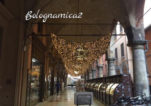 街も少しずつクリスマス仕様に.._b0338818_21475409.jpeg