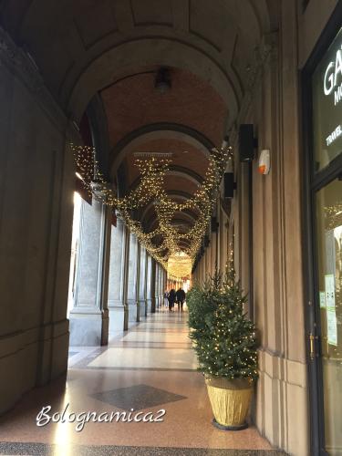 街も少しずつクリスマス仕様に.._b0338818_21501773.jpeg